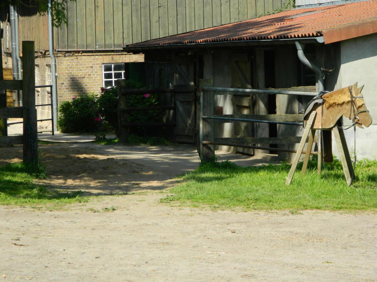 Ponyaußenbox mit Paddock