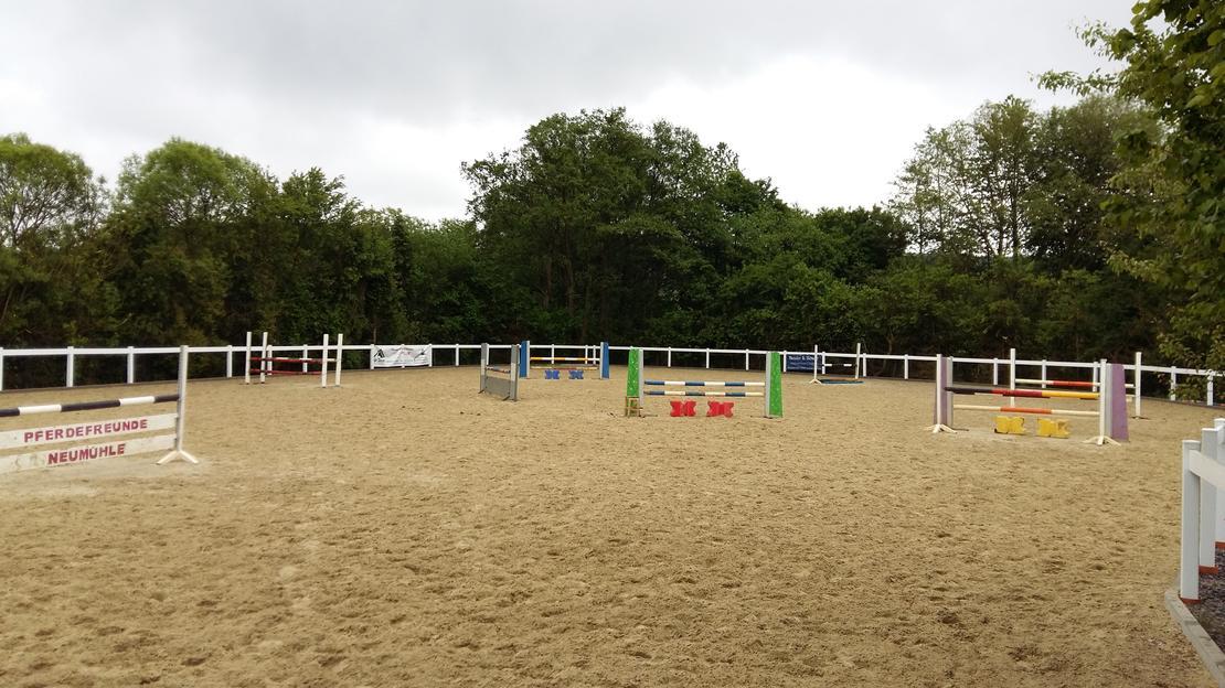 Dressur- und Springplatz mit HEUS Sand aus 2014