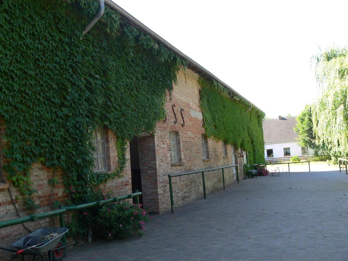 16. Putzplatz mit Abspritzplatz am Hof