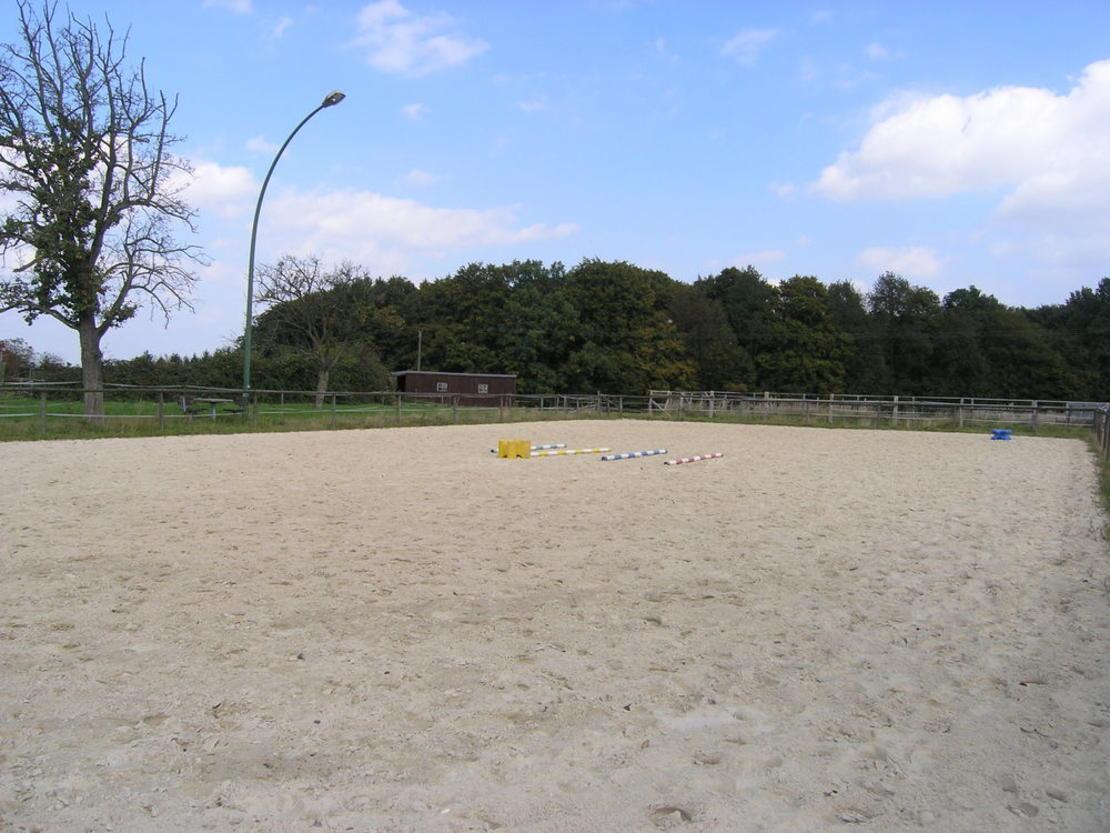 Pferdebewegungsplatz
