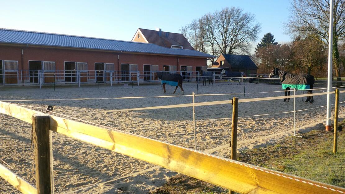 Der neue Stall mit Sand-Paddocks