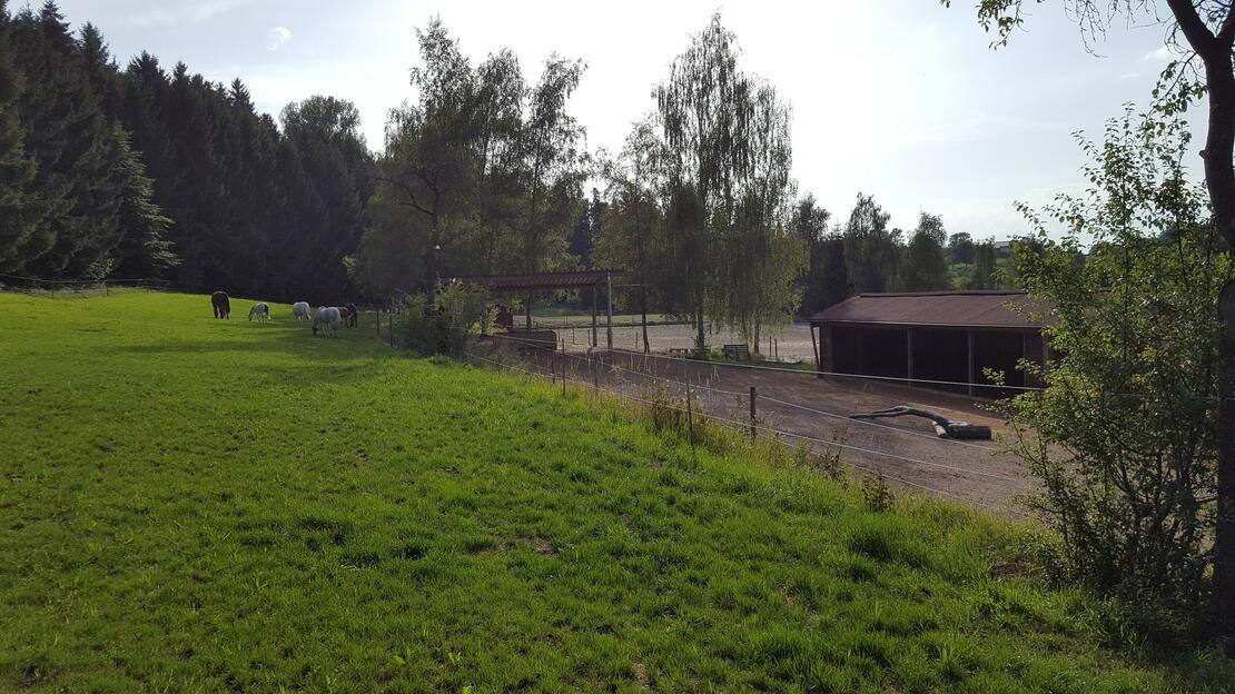 Wallachstall