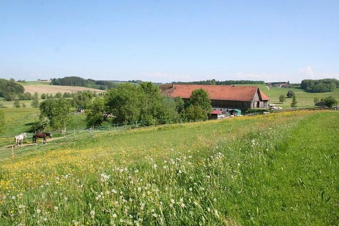 Einödhof