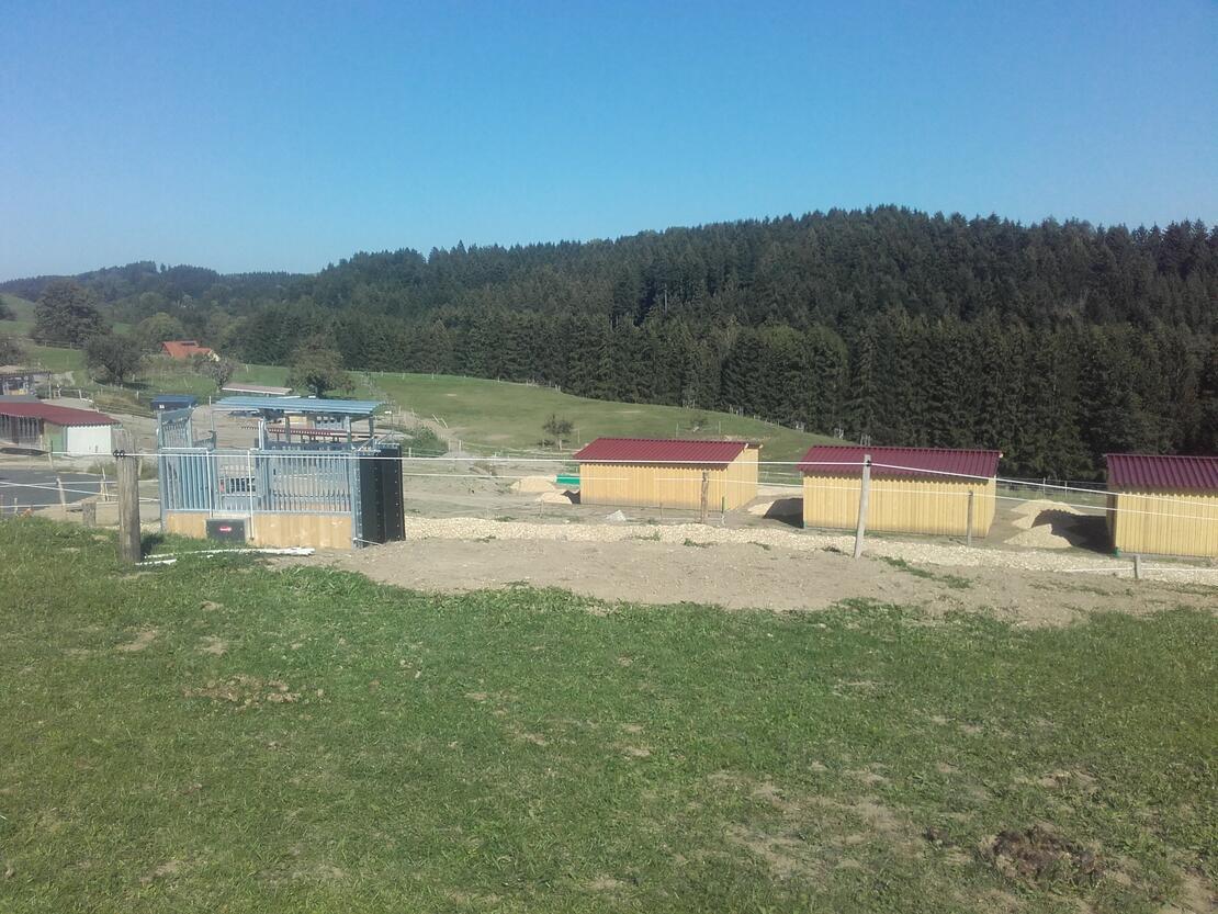 links die Weideselektion, rechts die Liegehallen