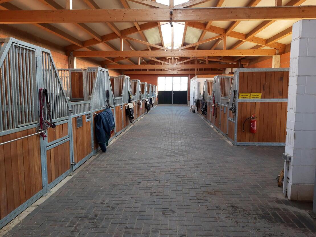 Blick in den neuen Stall