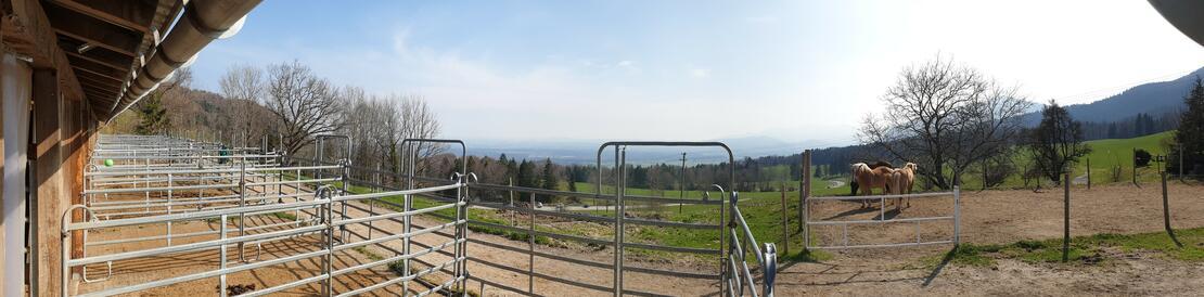 Panoramablick aus den Paddocks