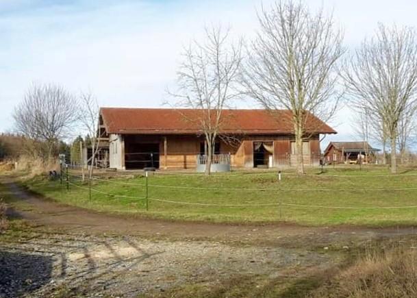 offener Stall (die Pferde sind z.Z. auf der Weide)