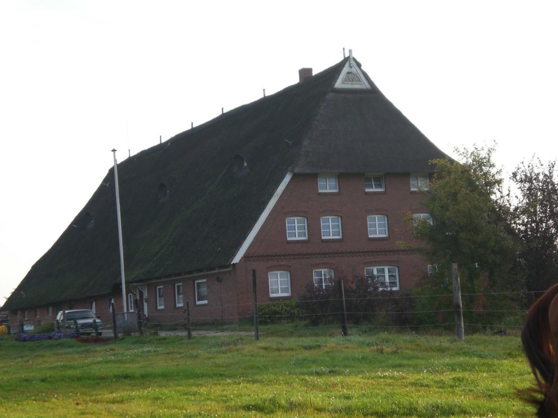 Wohnhaus mit angrenzendem Stallgebäude