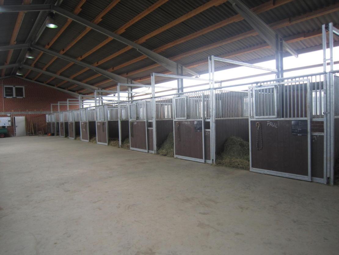 12 m² große Boxen mit extra breiter Stallgasse