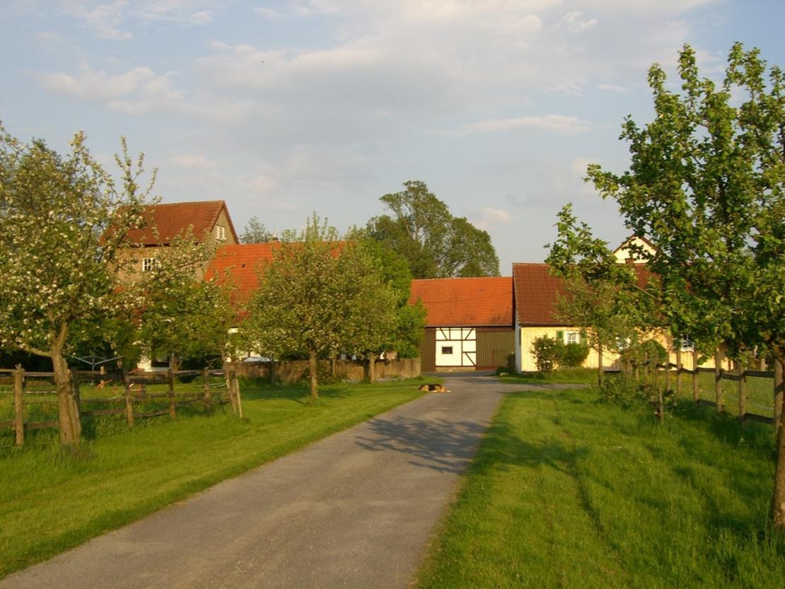 Werthesmühle