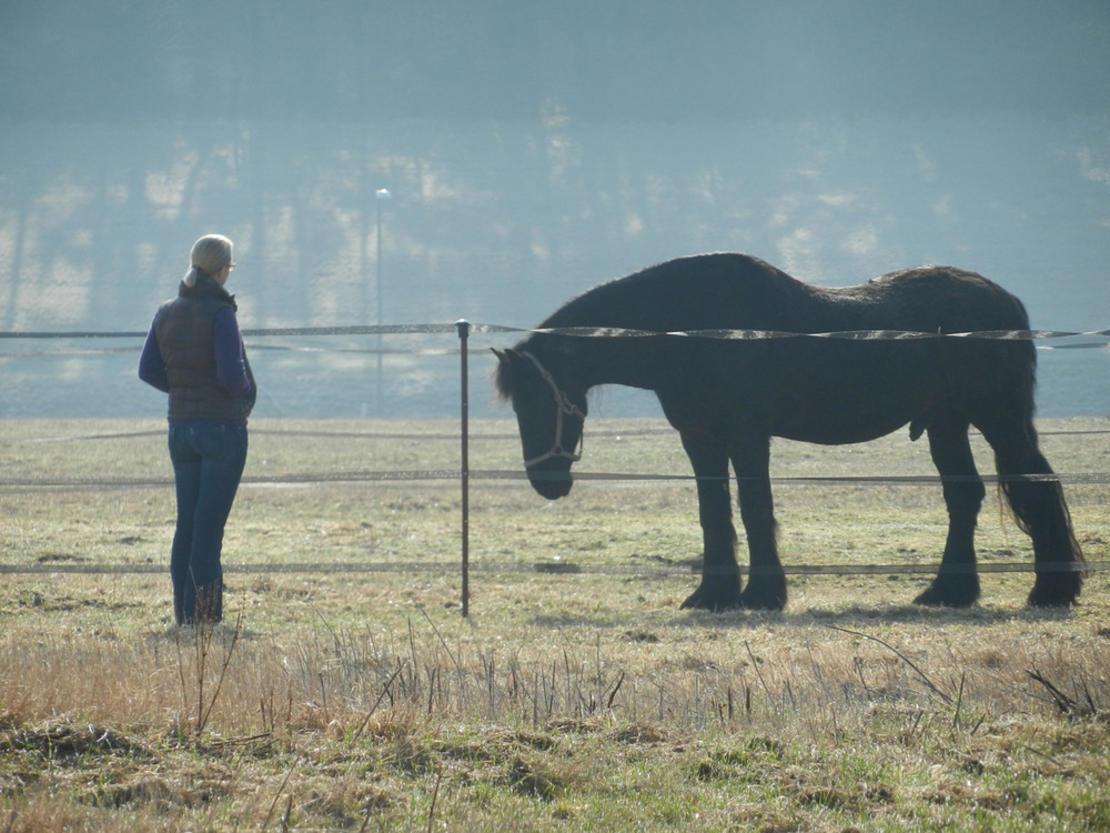 Pferde erfahren - sich selbst kennenlernen
