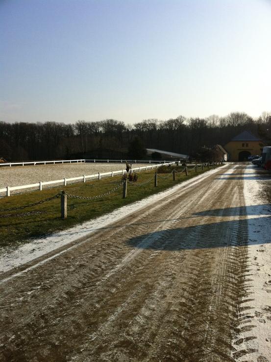 Weg zum Dressurplatz im Winter