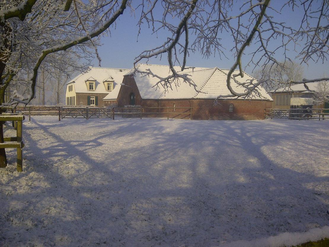 Der Wittenbergshof im Winter 2013