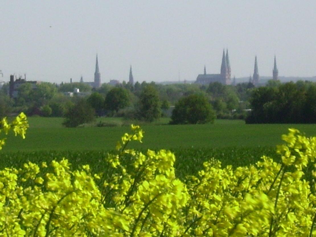 Sommer - Reiten über den Dächern Lübecks