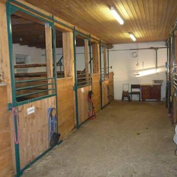 kleiner privat stall mit freien stallpl tzen oder pferdeboxen in tapfheim stall. Black Bedroom Furniture Sets. Home Design Ideas