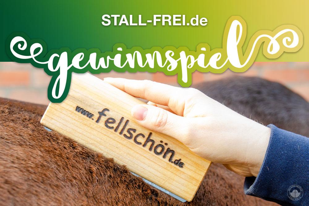 STALL-FREI.de Gewinnspiel - Holzbürste für Fellwechsel