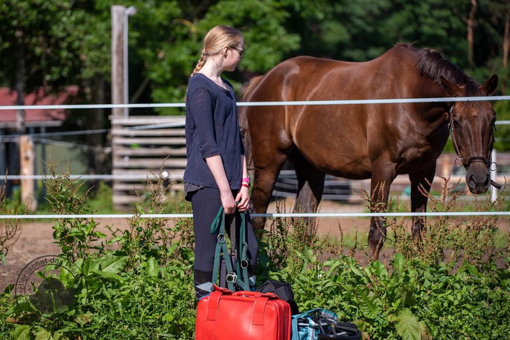 Reiterin im Urlaub mit Pferd
