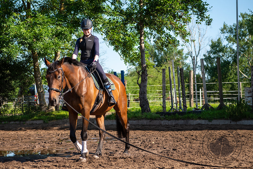 Reiterin auf Pferd an der Longe