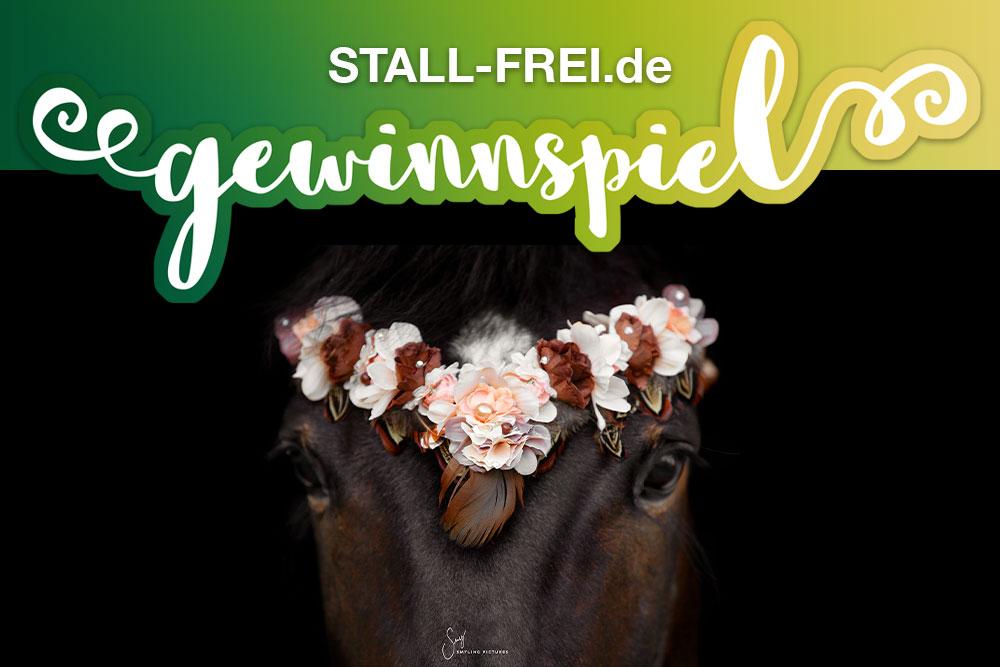 dunkles Pferde mit V-förmigen Stirnriemen mit Blüten und Federn in beige und braun