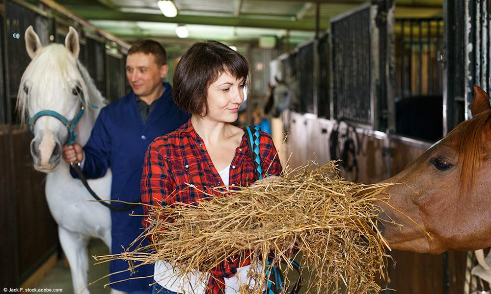 Mann und Frau in Stallgasse mit zwei Pferden