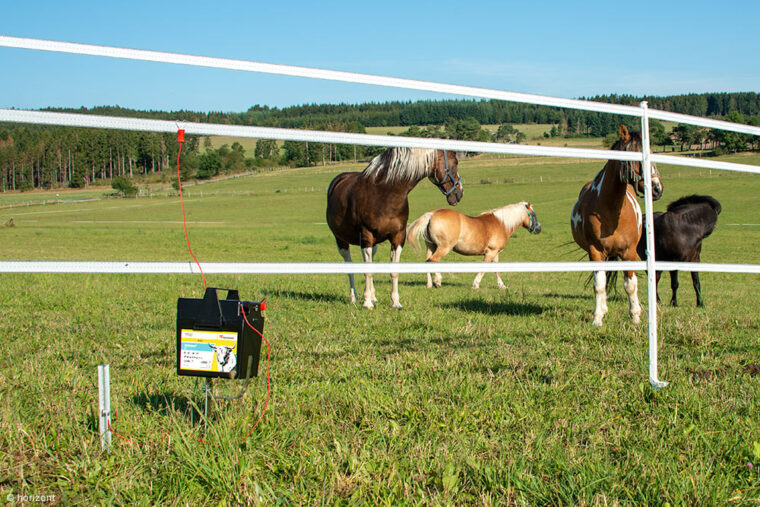 Elektrozaun mit Weidezaungerät auf Pferdweide